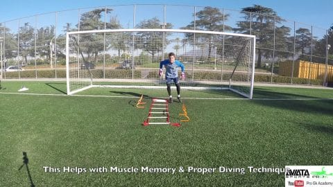 Goalkeeper Gk Training Gk Saves Videos For Goalkeepers